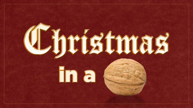 Dan Stevers – Christmas in a Nutshell