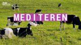 Wij doen: mediteren | jongeren